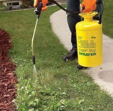 химический способ удаления сорняков