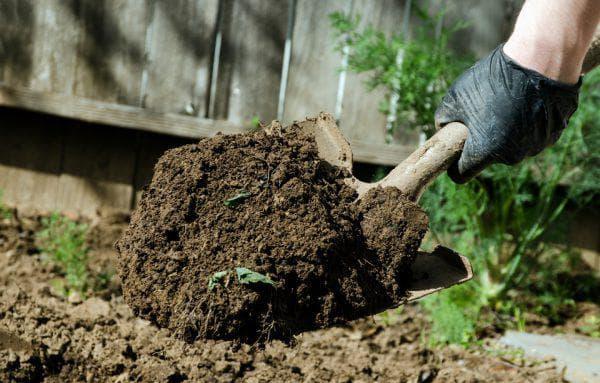 перекапывание сорняков