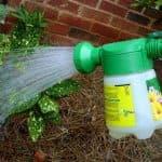 Особенности применения табачной пыли в садоводстве от вредителей