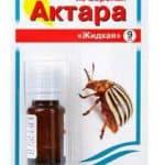 Подробная инструкция по применению средства от колорадского жука Актара