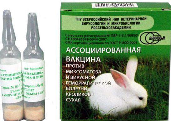 прививка от миксоматоза
