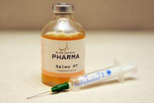 вакцинация от сальмонеллеза
