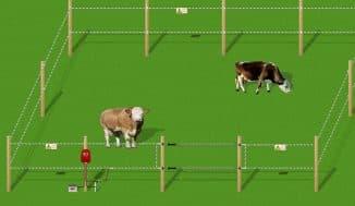 установка электропастуха для коров