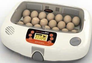 инкубатор для яиц на 30 штук