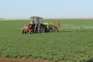 агротехника выращивания нута
